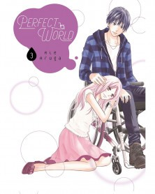 Perfect World Vol.3 (Ed. em Inglês)