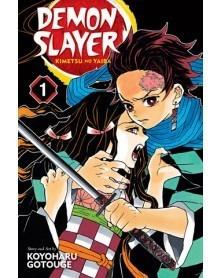 Demon Slayer: Kimetsu no Yaiba Vol.01