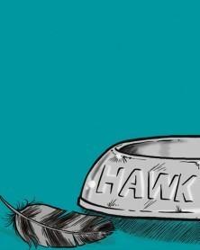 Hawk, de André Oliveira e Osvaldo Medina, capa