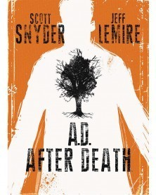AD: After Death HC, de Scott Snyder e Jeff Lemire, capa